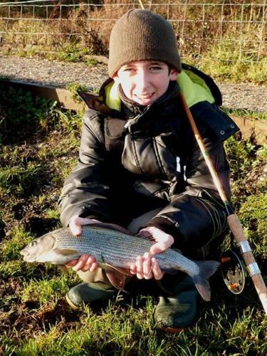 CONNOR'S GRAYLING