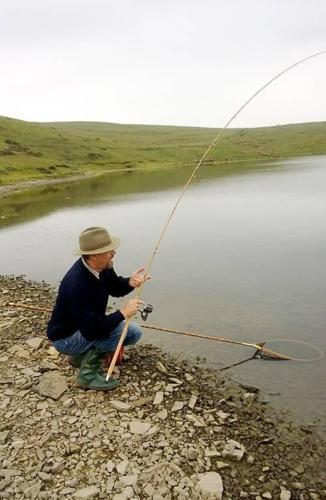 FISHING FOR WILDIES